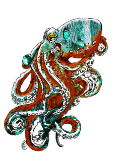 maglietta Mr. Octopus